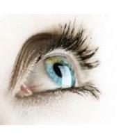 Результаты применения продукции Компании ФитАпиСвит при проблемах со зрением (отзывы)